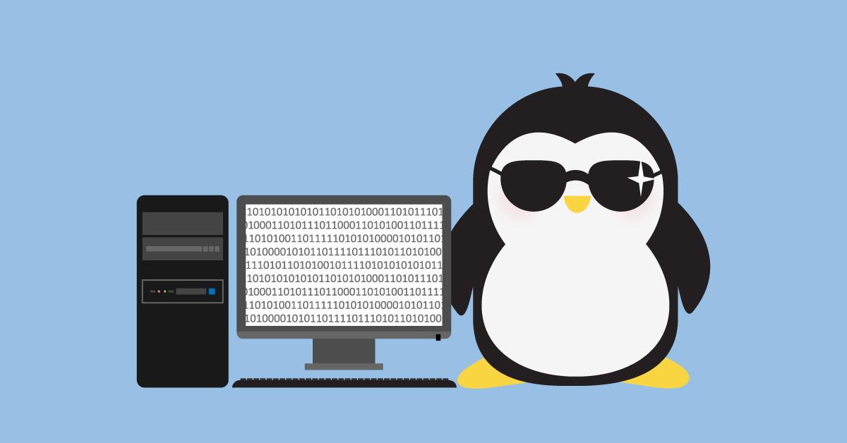 Distribuicoes Linux Caracteristicas Diferencas E Objetivos